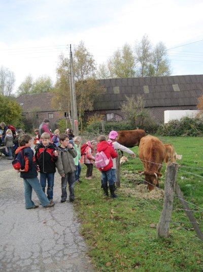 Schulklasse an Kuhweide-Einfahrt